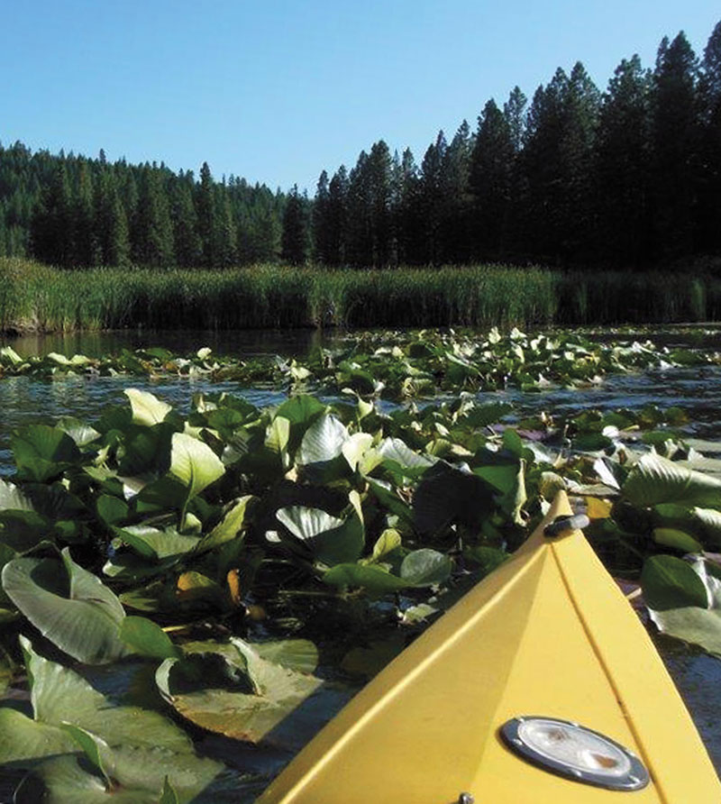 Kayaking on Walker Lake - Lassen County Times